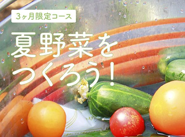 夏野菜体験コース