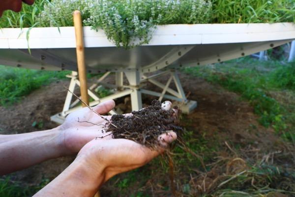 土はどこから生まれるのか