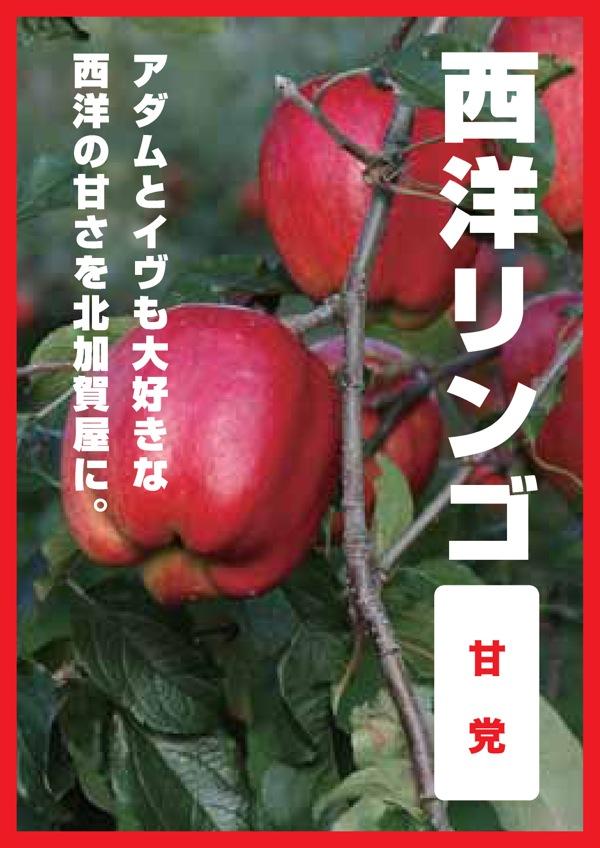 ss_果樹05西洋リンゴ.jpg